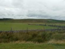 schottische Highland